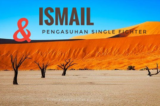 ISMAIL DAN PENGASUHAN SINGLE FIGHTER